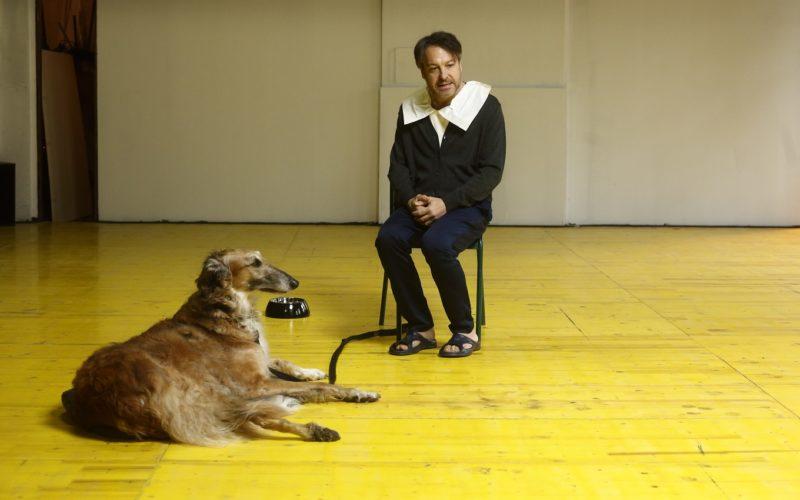 L'arte del teatro: monologo per cane e attore